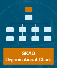 SKA Organisation Hierarchy Diagram
