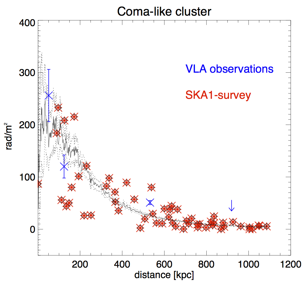 Number of sources detected in the background of a galaxy clusters at increasing distance from the cluster centre. Blue points are the current measures obtained  from VLA observations, red crosses represent the forecast for SKA1-survey.