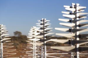 Close up of the SKA's low-frequency prototype antennas